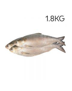 product - 15HBRSP1-8